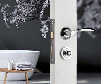 Bathroom door handles category