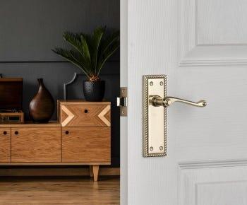 Brass door handles category
