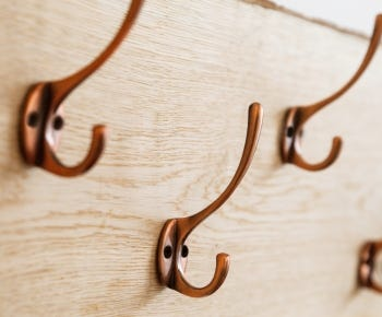 Coat and hat hooks category